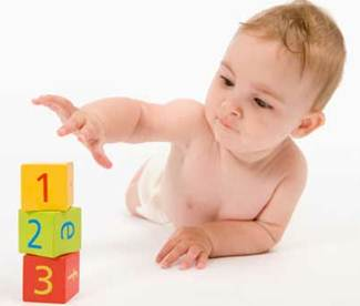 Description: Early experience in the first stage of babies' lives helps form their thought.
