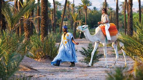 Description: at Four Seasons resort Marrakech