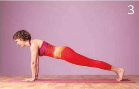 Description: Plank Pose activates your core strength, calling on the muscles needed to maintain a neutral spine.