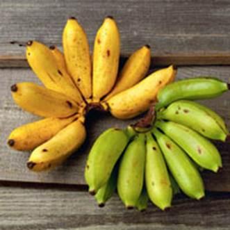 Description: Pip banana cures backache.