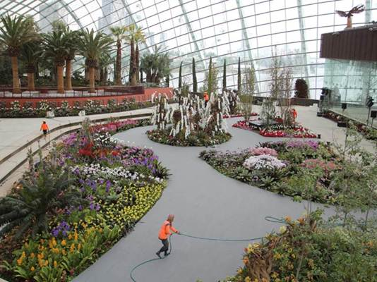Description: Flower Dome houses plants that live in the cool-dry climate of the Mediterranean, like olive trees, date palms and baobabs.