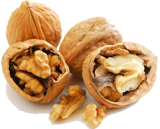 Walnut contains a source of omega-3 fatty acid that can help brain cells contact together.