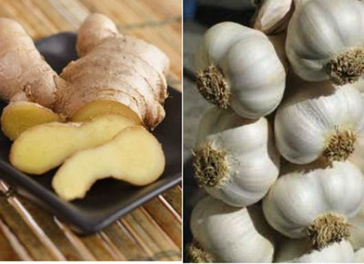 Garlic and ginger,… can prevent germ causing disease.