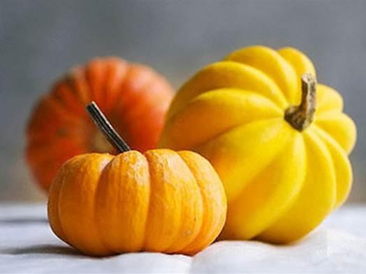 Vitamin A in pumpkin is good for eyesight development.