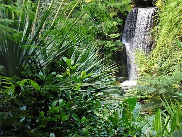 Description: Masoala Rainforest at Zurich Zoo