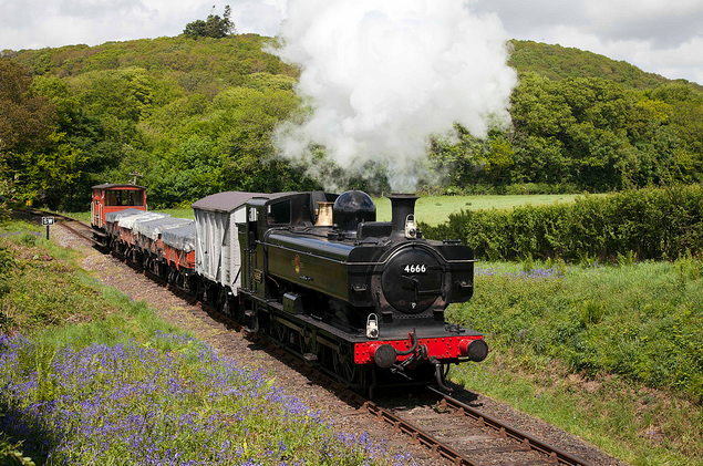Description: You can visit The  Bluebell Railway in Spring