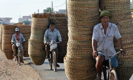 Description: Cycling is commonplace in Cambodia