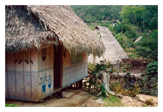 Description: Deep in the Peruvian jungle is Mayantuyacu.