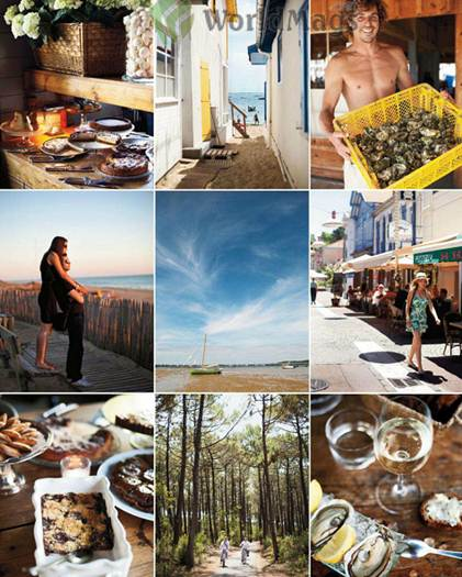 Description: Clockwise from top left: tarts at Le Bistrot du Bassin; the village of L'Herbe; oyster catch of the day; Arcachon's ville d'été or summer town; Chez Boulan's speciality; a pine forest near L'Herbe; Le Bistrot serves 30 desserts daily; Plange de I'Horizon at dusk. Centre, the lagoon at low tide