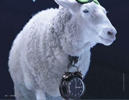 Description: When counting sheep fails