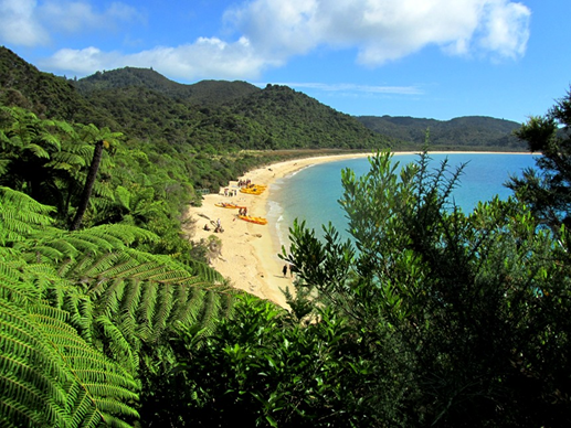 Description: Abel Tasman coast track