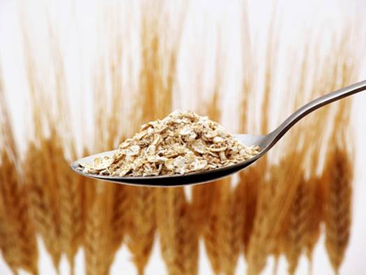 The oat is one of the best foods to be eaten in pregnancy.