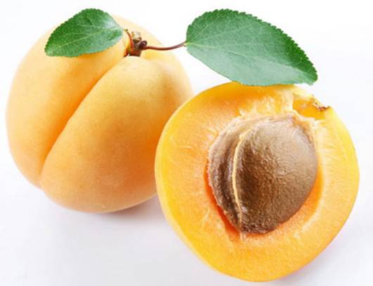 Eating apricot can expand life expectancy.
