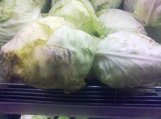 Addled cabbage contains nitrite that plays role in forming methemoglobin in people's blood.