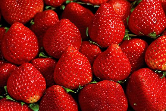 Strawberry can catch one kind of bacterium that can cause mortal diarrhea, losing water…