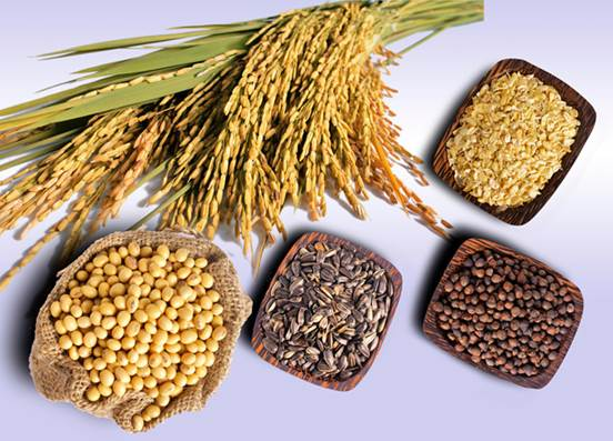 The kinds of carbohydrate that exist in the grain with whole seed not only bring a lot of benefits for health but also improve the reproductive ability of women.