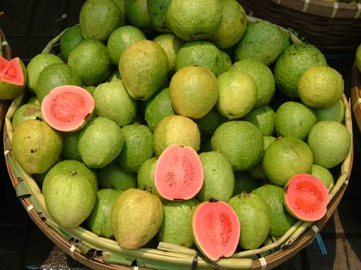 The guava is a popular fruit and has incredible effects on human health and hair.