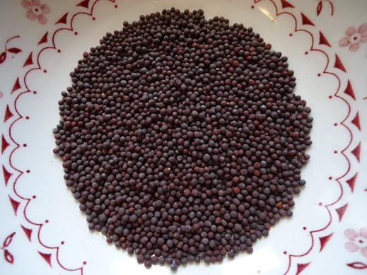 Description: Black mustard seeds