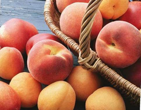 Description: Luscious, juicy peaches – a real summer treat