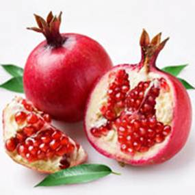 Description: Pomegranate is a medicine for cancer.