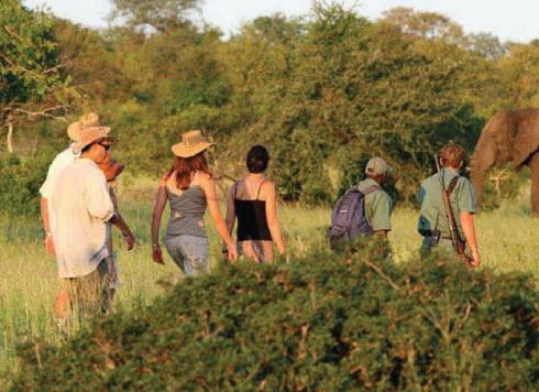 Description: Sue and co explore the wilderness on foot