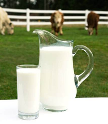 Description: Description: Cow's milk