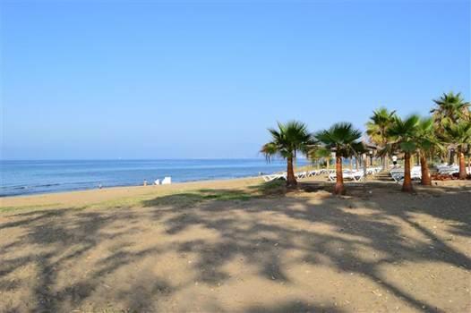 Description: Playa De Zaragoza beach