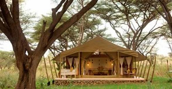 Description: The Boran-style tent suite of glamping resort Joy's Camp