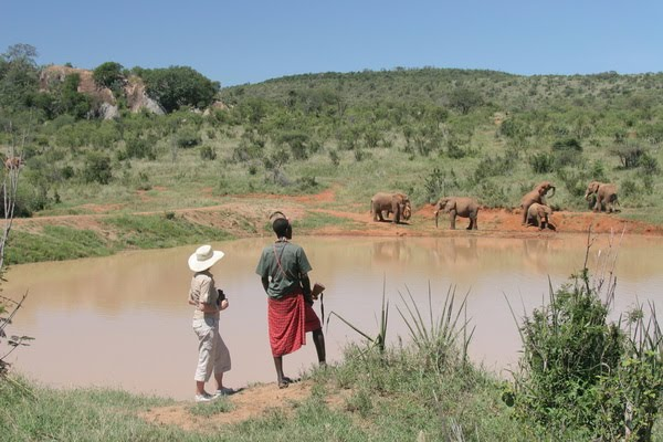 Description: The Ewaso Nyiro River