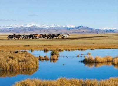 Description: Gansu prairie