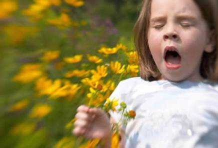 Description: Allergy to the pollens of flowers and grasses