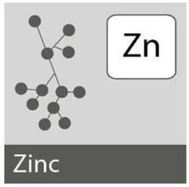 Description: The necessity of zinc