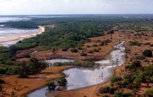Description: Saadani National Park