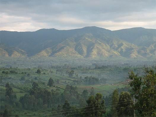 Description: the beautiful Virunga is Africa's oldest national park
