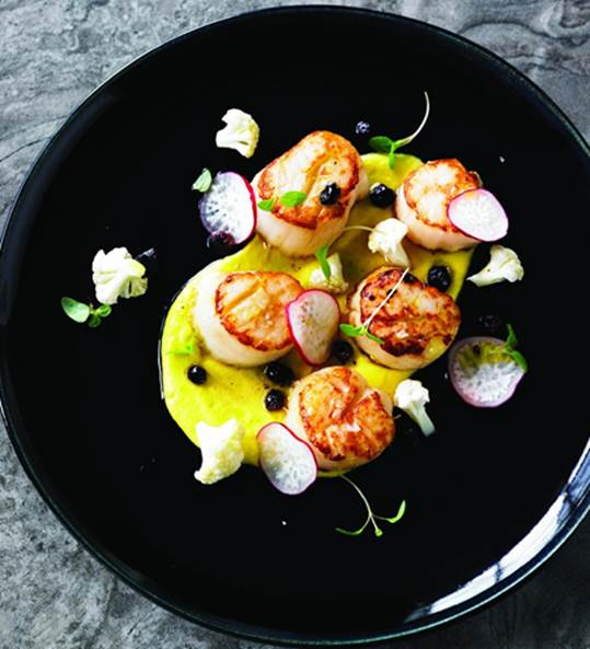 Seared scallops with corn purée and currant vinaigrette