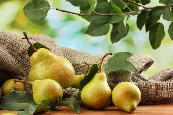 Description: A medium-sized pear packs in over 200mg of potassium.