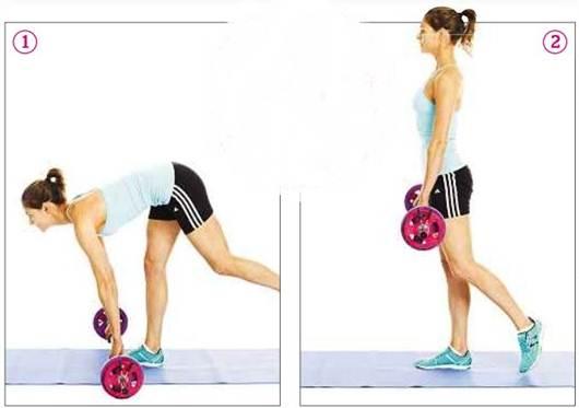 Description: Areas trained: Calves, rear thighs, bottom, core, lower back, upper back, shoulders