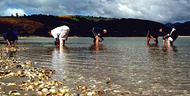 Description: The Mariscadoras – the ladies who harvest shellfish in the bay bordering Cambados in the Ría de Arousa