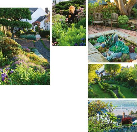 Description: Val Robbins tending her plants