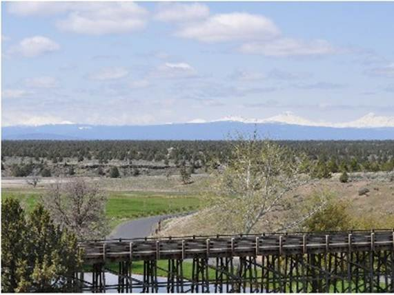 Description: The Ranch is stunning with amazing views of the Pacific.