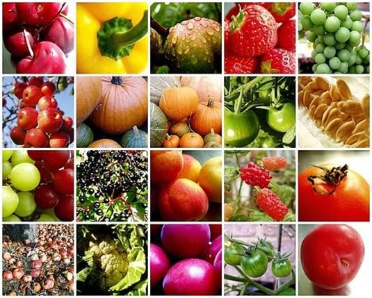 Description: Vary fruit and veg