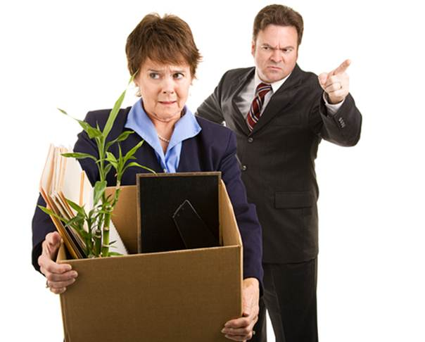 Description:  Do resist the temptation to throw a pot plant at your ex-boss
