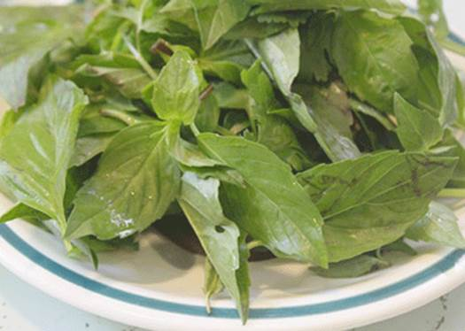 Basil is good for digestive system.