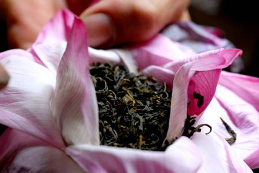 People also use lotus to embalm tea.