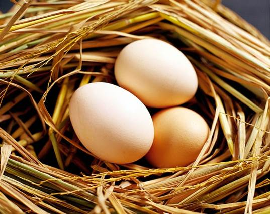Egg doesn't have the dangerous effect on the concentration of cholesterol in your blood.