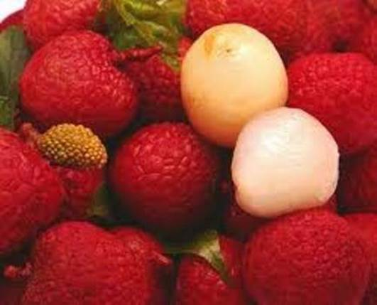 After finishing eating litchi, you should eat the white part on the head of litchi's pip because this thing can prevent the hot feeling.