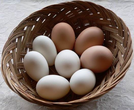 If chicken eggs are cooked and stored appropriately in low temperature, there'll be often no problem arising.