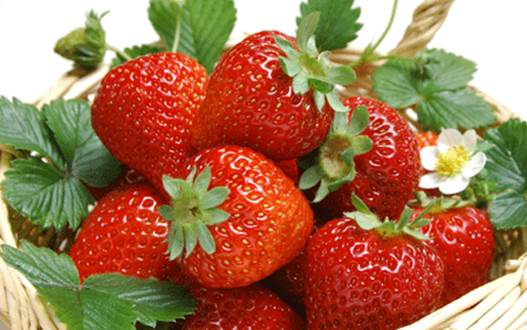 Strawberries can prevent thrombosis.
