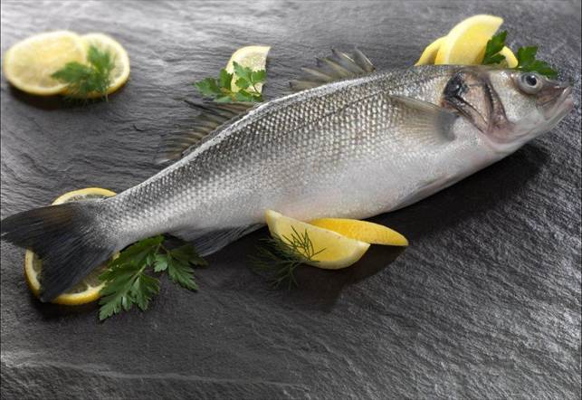 Description: Anglesey sea bass