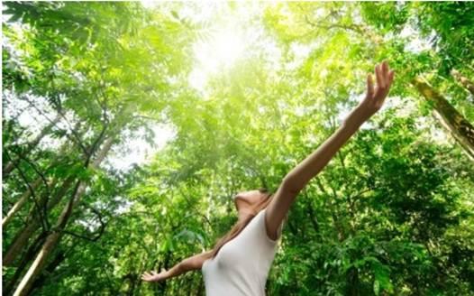 Description: The best source of vitamin D is the sun.